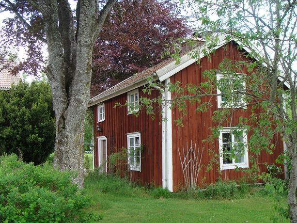 red cottages in sweden forest