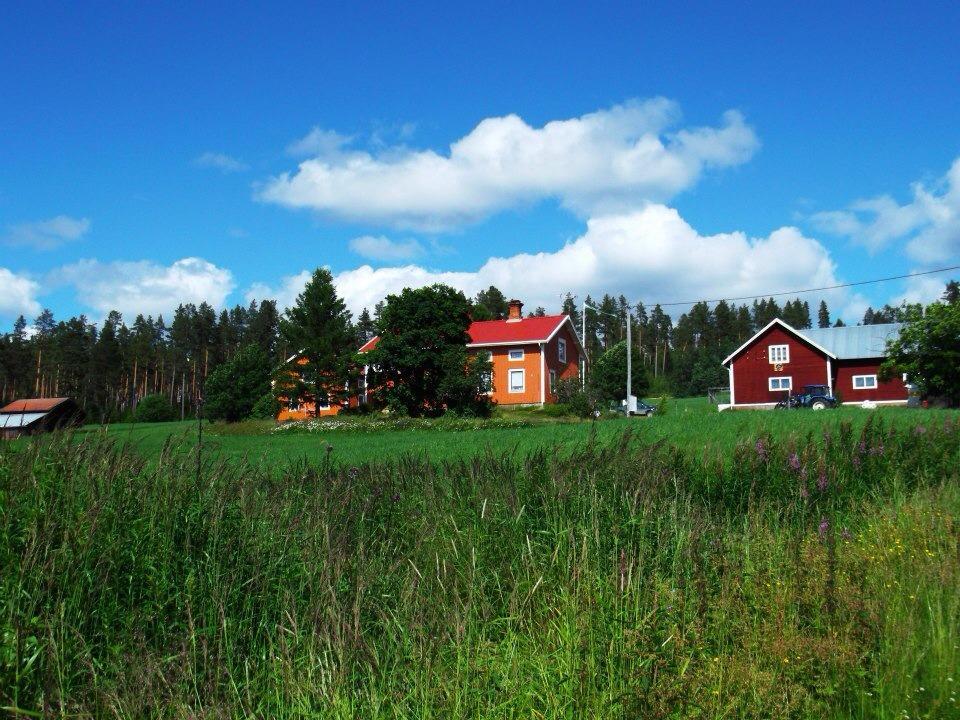 horticulture Scandinavia blue skies