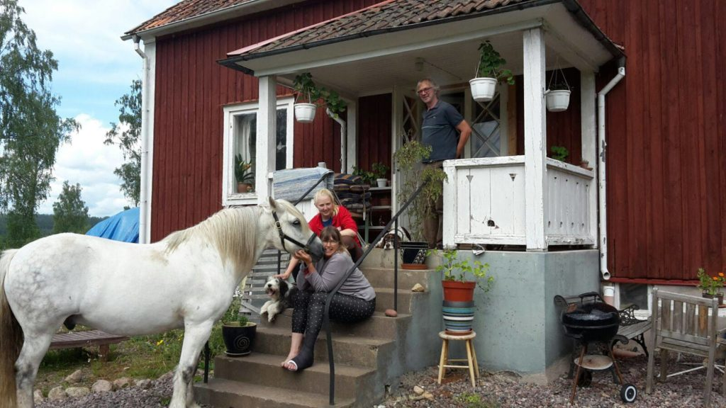 horse back riding sweden countryside