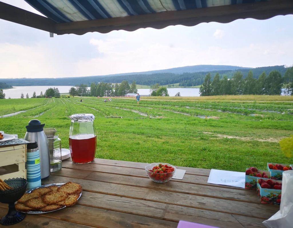 Swedish lake view accommodation