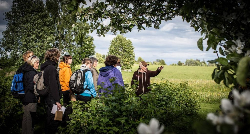 Adventures for Seniors hiking walking