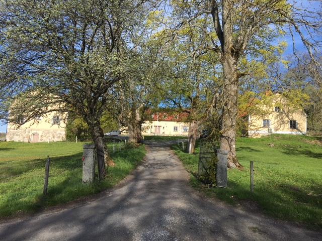 sheep farm sweden horse carriage rides